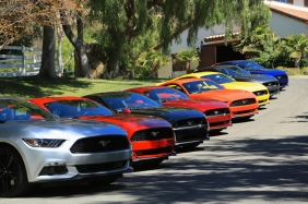 2015-Mustangs-at-the-ranch-002
